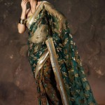 Embroidered Sarees Design