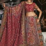 Fancy-Embroidered-Sarees 2011