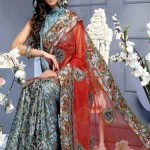 Latest-Fancy-Saree-2011
