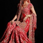 Pakistani Bridal Sharara Dresses