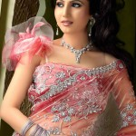 Indian Sarees Collection 2012 - Saree Fashions 2012