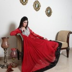 Party wear dresses 2012- Pakistani Designers party wear Collection