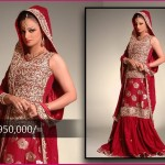 Rizwan Moazzam Bridal Collection 2012
