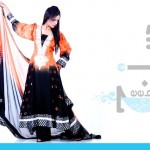 Stylish Deebaj Party Wear Collection 2012-2013 | Pakistani Dresses
