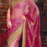 Pakistani Sari Fashion Trends 2012 - Latest Asian Fashions