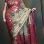 Indian Wedding Saree designs - Latest Asian Fashions