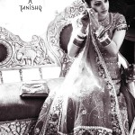 Bridal jewelry designs 2012 - Latest Pakistani bridal jewelry designs