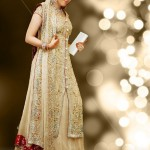 wedding lehenga with long shirt.
