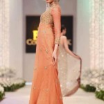 Latest designs of pakistani gowns