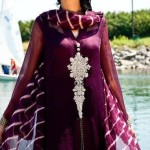 Pakistani dresses with silver stone work