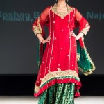 indian and pakistani bridal dresses