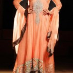 Pakistani embroidered outfits