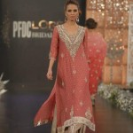 Pakistani dresses with neck embroidery