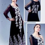 Pakistani formal dresses with back embroidery