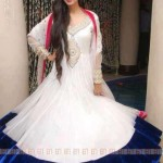 stylish pakistani dresses with neck embroidery