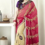 Fancy saree designs 2013
