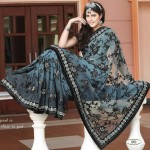 Embroidered saree designs 2013 – Designers saree designs