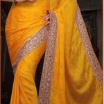 Indian saree designs 2013