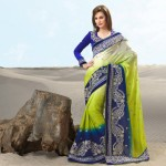 Indian saree fashion 2013