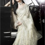 Net saree designs 2013
