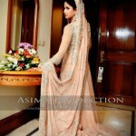 Pakistani walima dresses in tail style