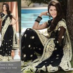 Saree designs 2013