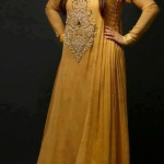 Fancy pakistani formal dress designs