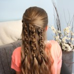 Multiple braids long hairstyles
