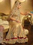 bridal walima dress new designs