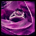 radaint orchid ring 2014
