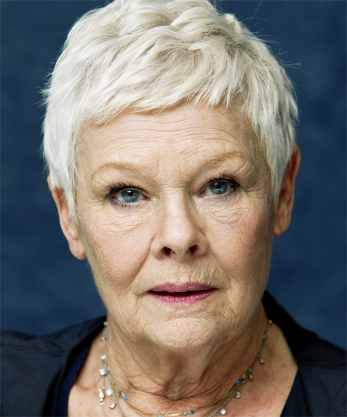Judy-Dench layered pixie for women